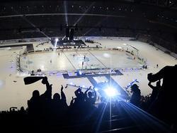 DEL Winter Game 2015